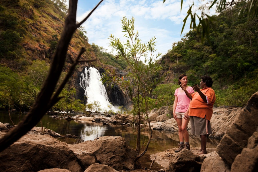 Daintree Dreaming Tour ToursimAU
