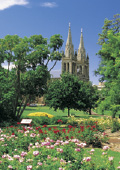 St Peter's Cathedral through Adelaide Parklands Ro