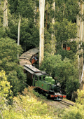 Puffing bIlly Steam Train travelling through the D