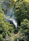 Puffing Billy train letting off steam and travelli
