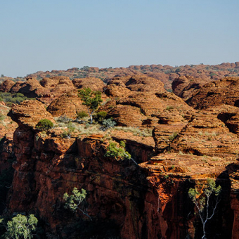 ayers rock kings canyon YK41 preview