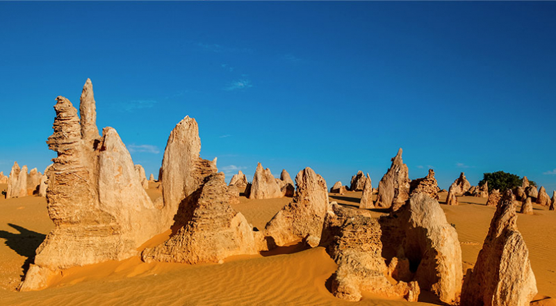 nambung national park pinnacles p4l preview