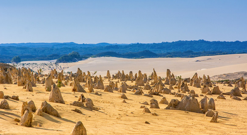 nambung national park the pinnacles p5l preview