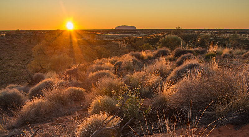 red centre uluru sunrise from a distance preview