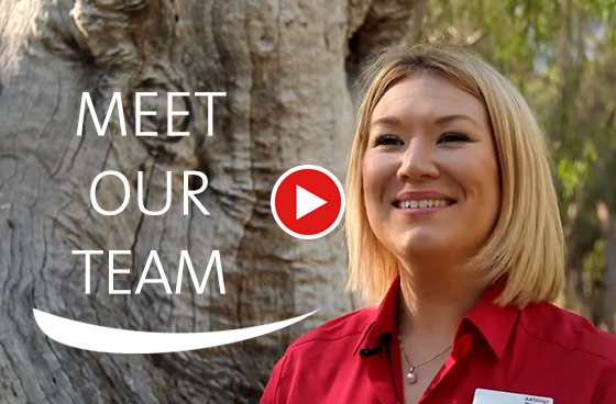Meet our Team of Travel Directors through our videos