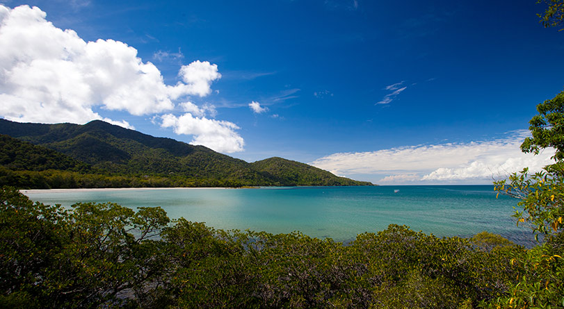 Cape Tribulation, Daintree & Mossman Gorge
