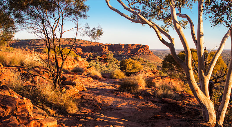 Uluru & Kings Canyon Unearthed