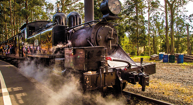 Puffing Billy Heritage Steam Train Journey