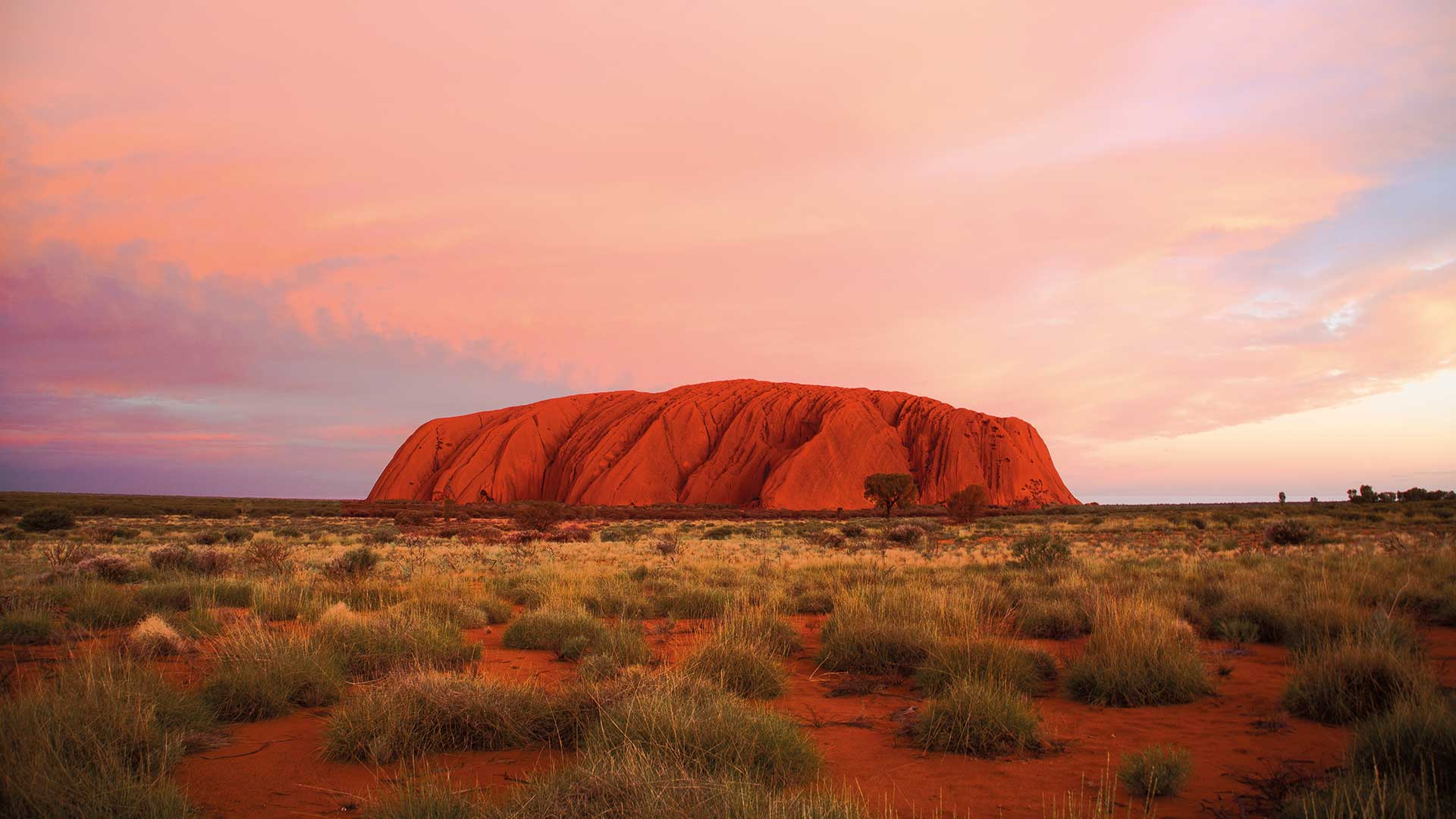 Red Centre Highlights