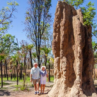 Termite Mounds NDKD 20 21 Preview