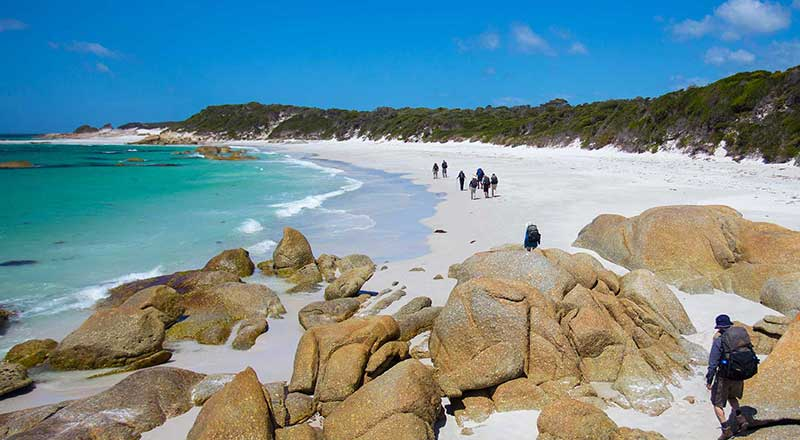 bay of fires preview
