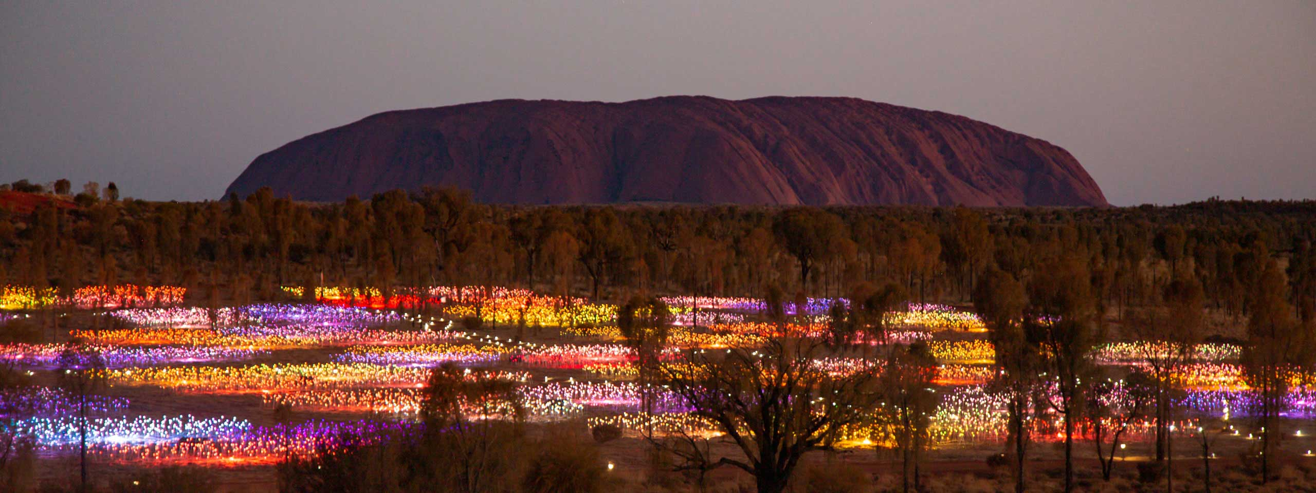 Field of Light, Uluru