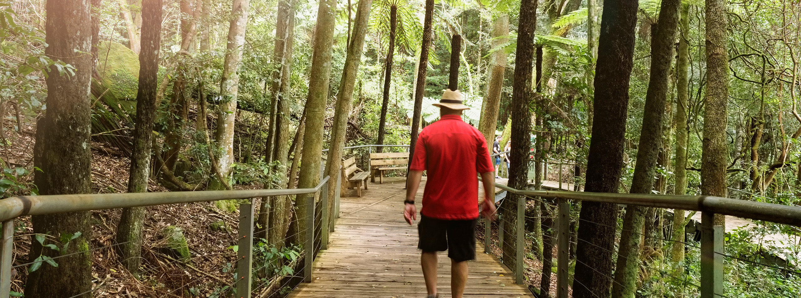Scenic World walks, Blue Mountains