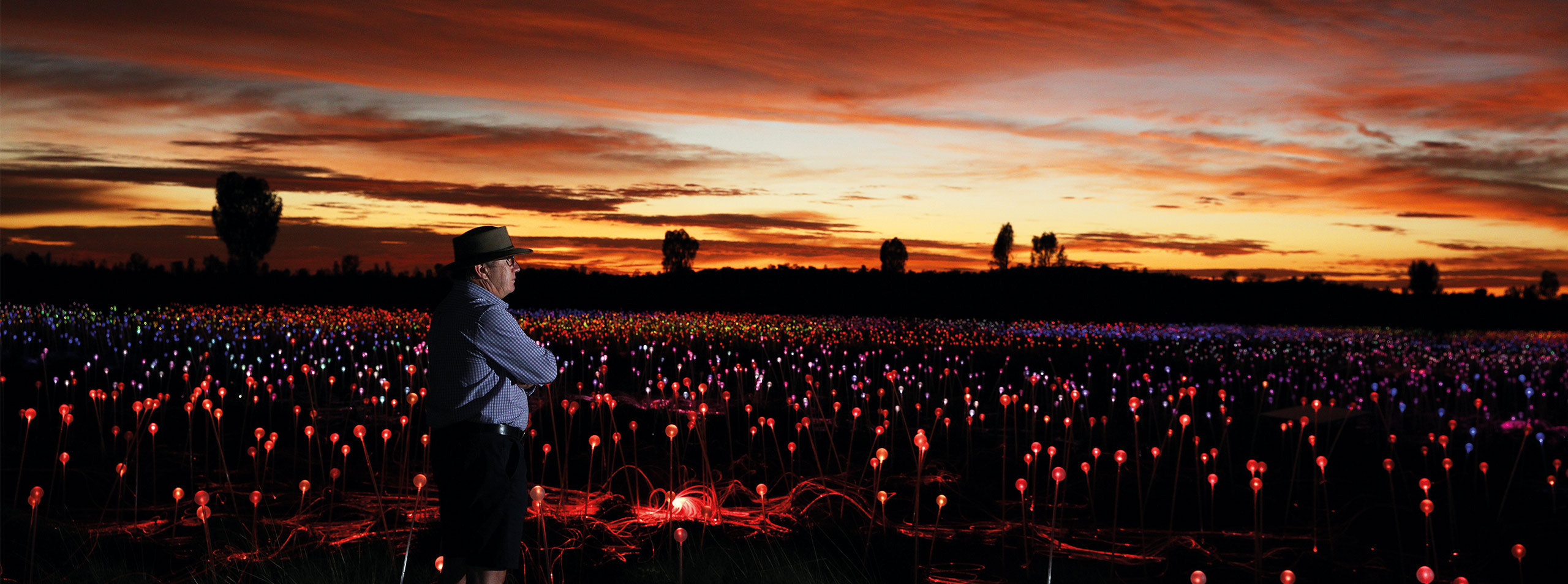 Bruce Munro, Field of Light
