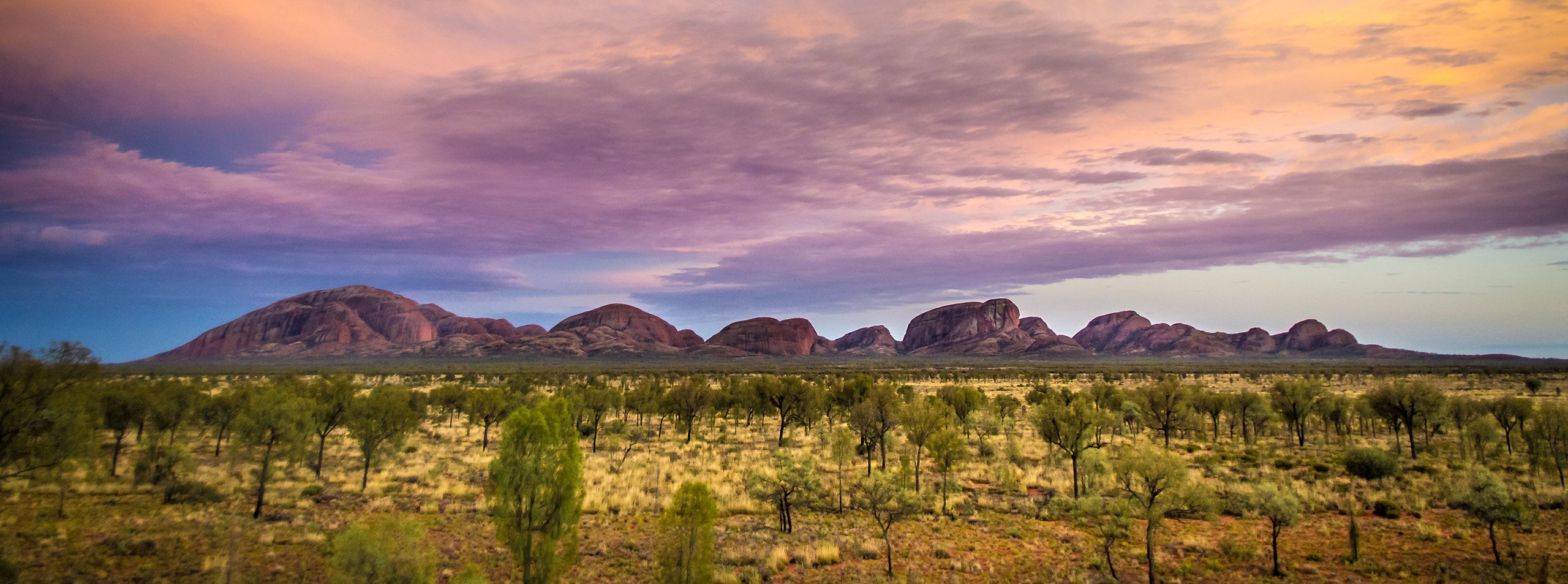 Kata Tjuta Viewing Platform