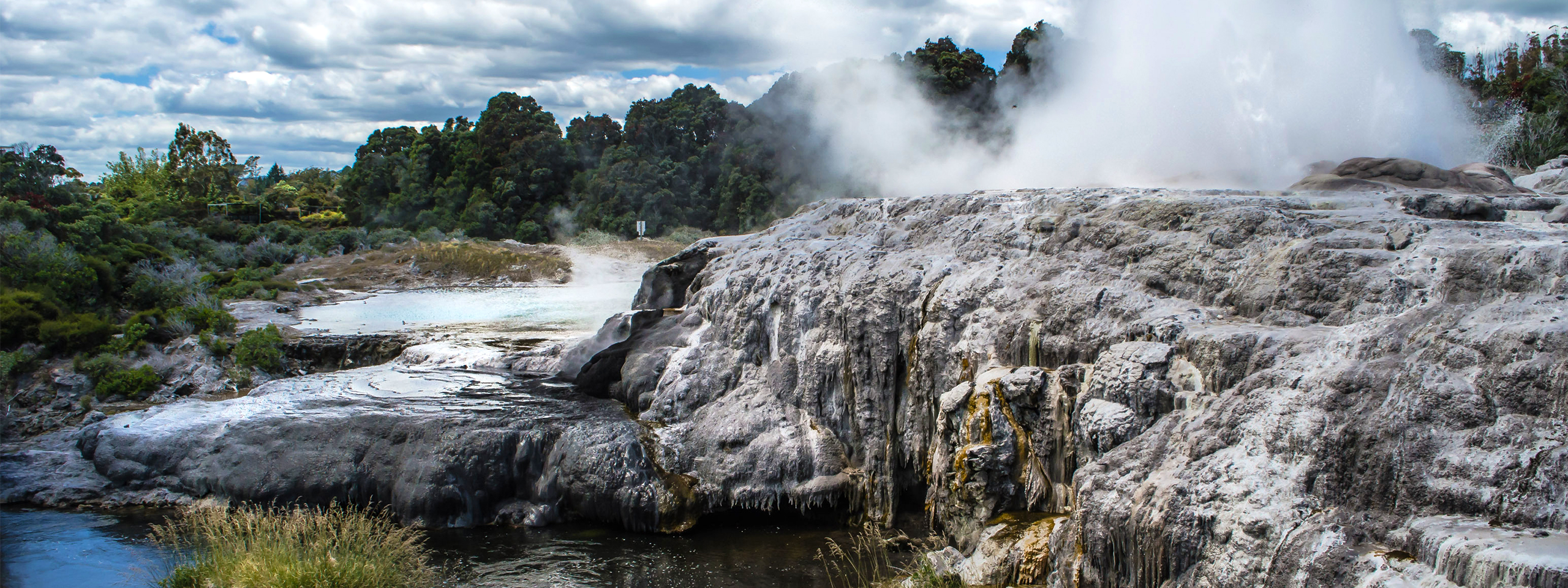 Te Puia Thermal Springs