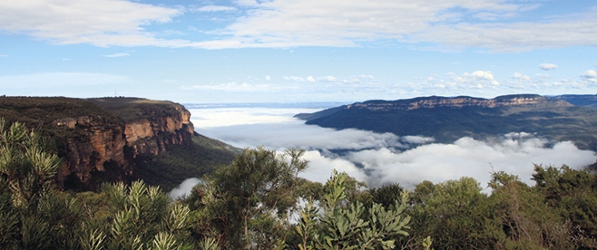 Great Blue Mountains