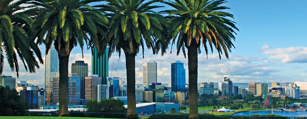 Option trading perth