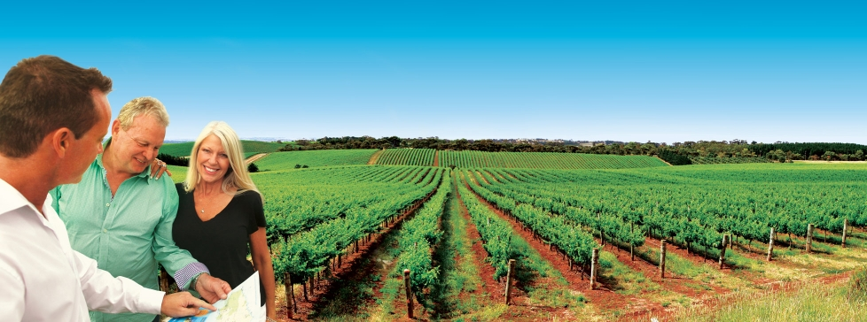 The Barossa