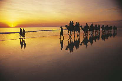 Camel Ride - Cable Beach
