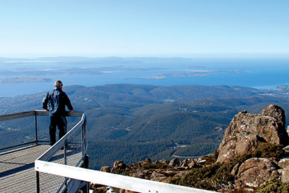 Mt Wellington Tour