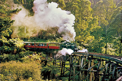 Puffing Billy Steam Train & Wine Country in Style